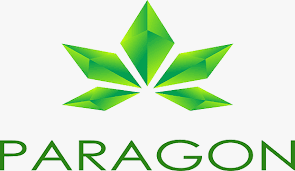 Screenshot_2019-10-11 Paragon Coin - Google Search(1)